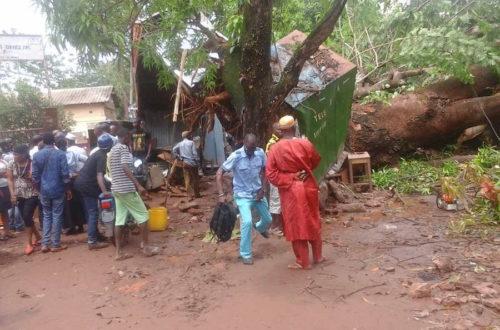 Article : Conakry : quand arrive la pluie, les dégâts s'annoncent